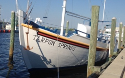 The cute harbor of Tarpon Springs