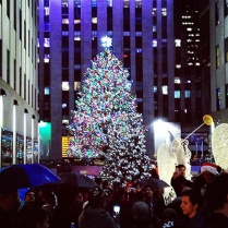 The hustle bustle of Rockefeller Center on Christmas night to see the mammoth Christmas tree!