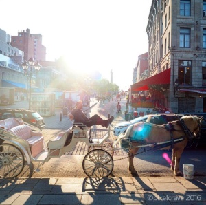 My hubby's shot – Horse carriage in Old Montréal