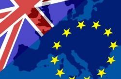EU-referendum-vote-to-stay-says-Greencore-boss_medium_vga
