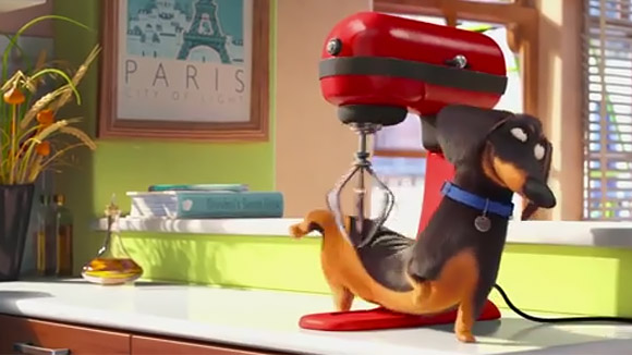 Flixchatter Review The Secret Life Of Pets 2016 Flixchatter Film Blog