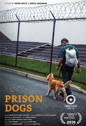 prisondogs