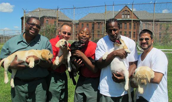 prisondogs_still2