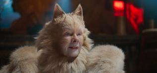 cats-judidench