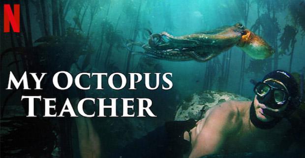 MyOctopusTeacher-MVP